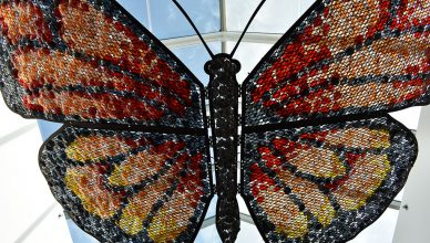 Airport Butterfly