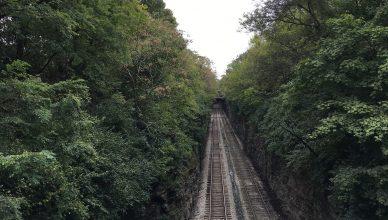 Rails near Woodycrest