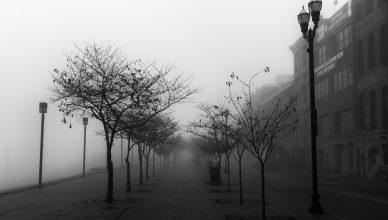 First Avenue Fog